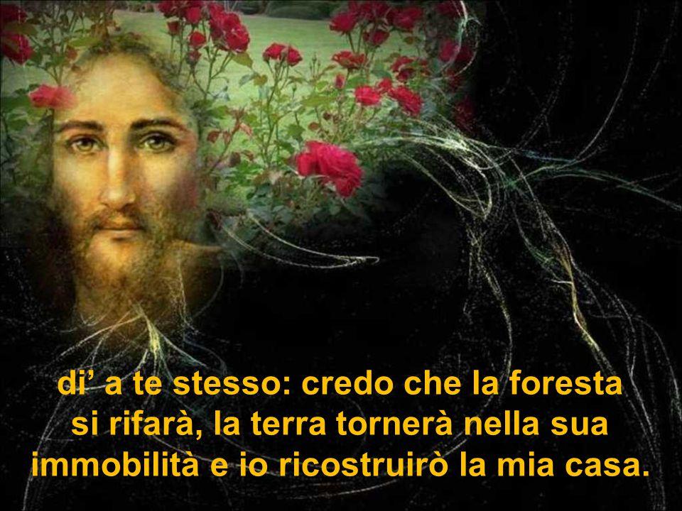 di' a te stesso: credo che la foresta si rifarà, la terra tornerà nella sua immobilità e io ricostruirò la mia casa.
