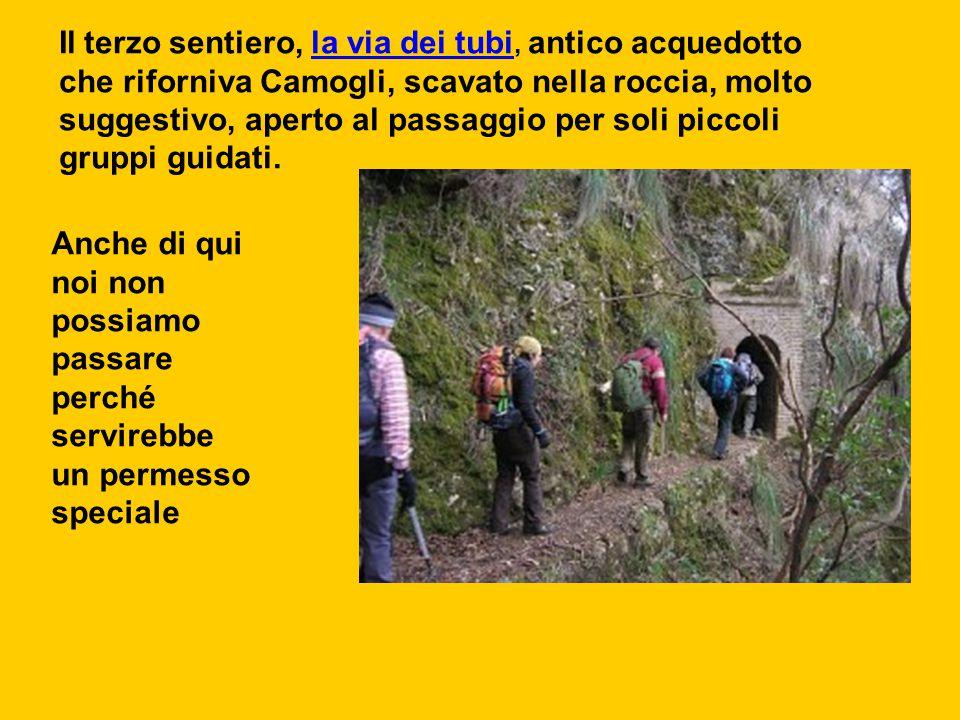 Il terzo sentiero, la via dei tubi, antico acquedotto che riforniva Camogli, scavato nella roccia, molto suggestivo, aperto al passaggio per soli picc