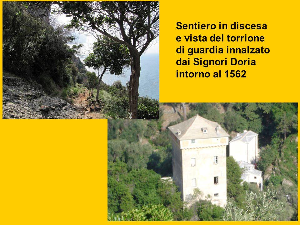 Sentiero in discesa e vista del torrione di guardia innalzato dai Signori Doria intorno al 1562