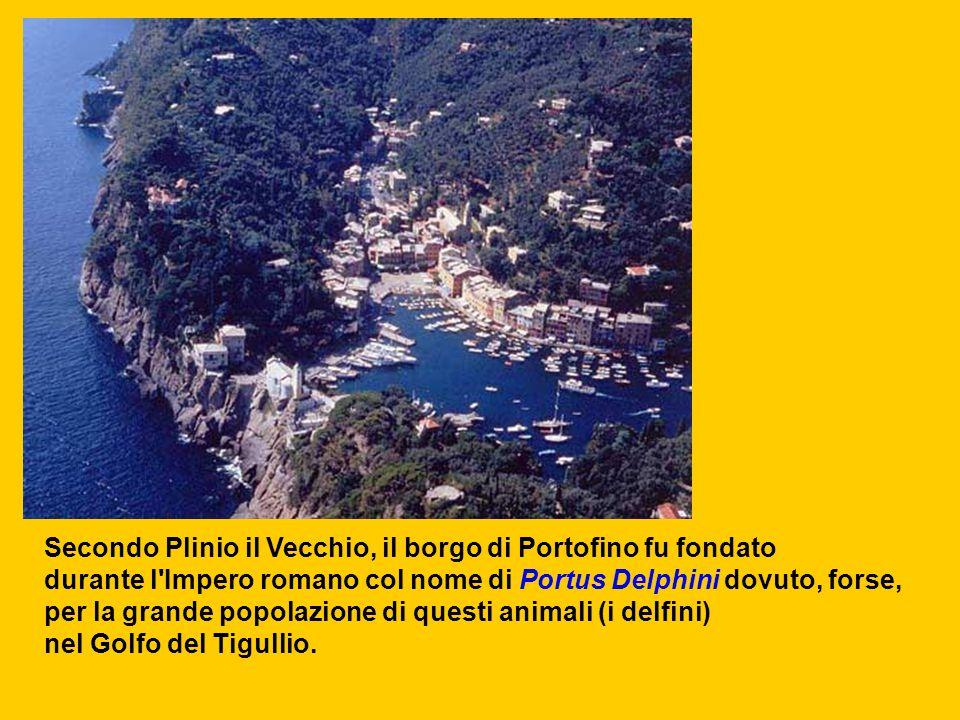 Secondo Plinio il Vecchio, il borgo di Portofino fu fondato durante l'Impero romano col nome di Portus Delphini dovuto, forse, per la grande popolazio