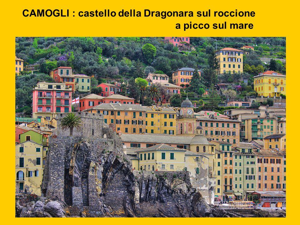 CAMOGLI : castello della Dragonara sul roccione a picco sul mare