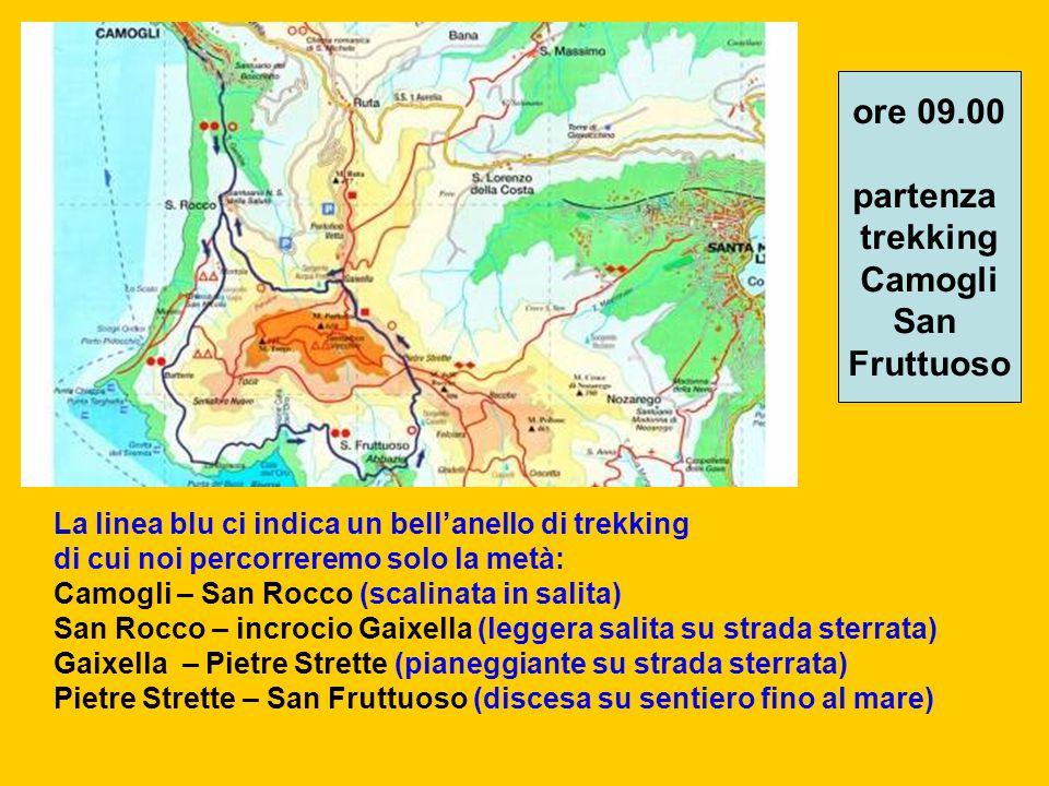 La linea blu ci indica un bell'anello di trekking di cui noi percorreremo solo la metà: Camogli – San Rocco (scalinata in salita) San Rocco – incrocio