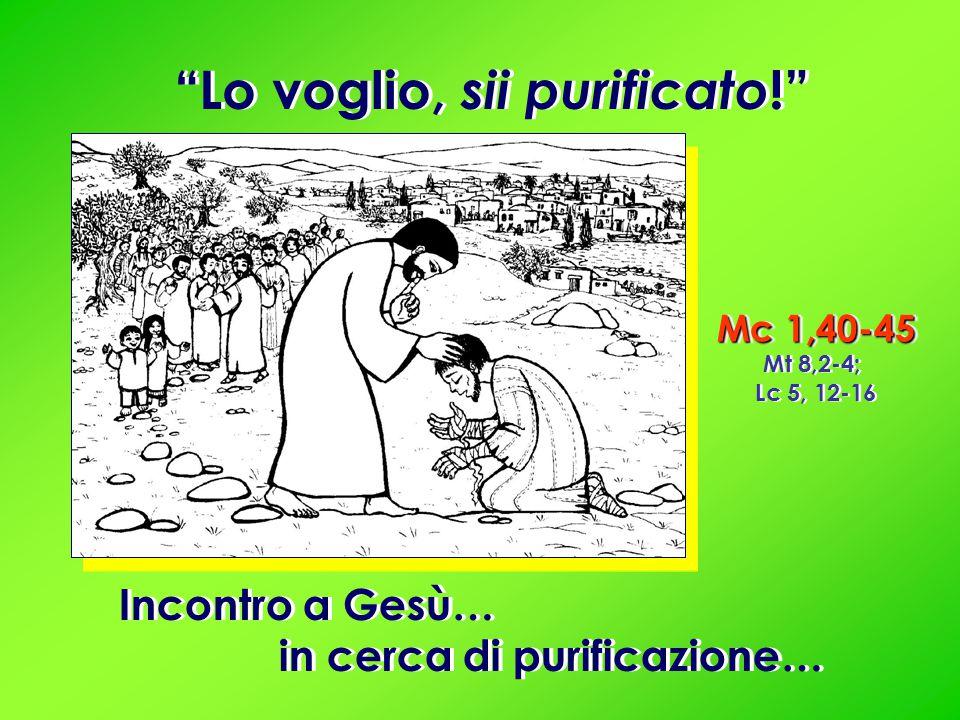 Mc 1,40-45 Mt 8,2-4; Lc 5, 12-16 Mc 1,40-45 Mt 8,2-4; Lc 5, 12-16 Incontro a Gesù… in cerca di purificazione… Incontro a Gesù… in cerca di purificazione… Lo voglio, sii purificato !