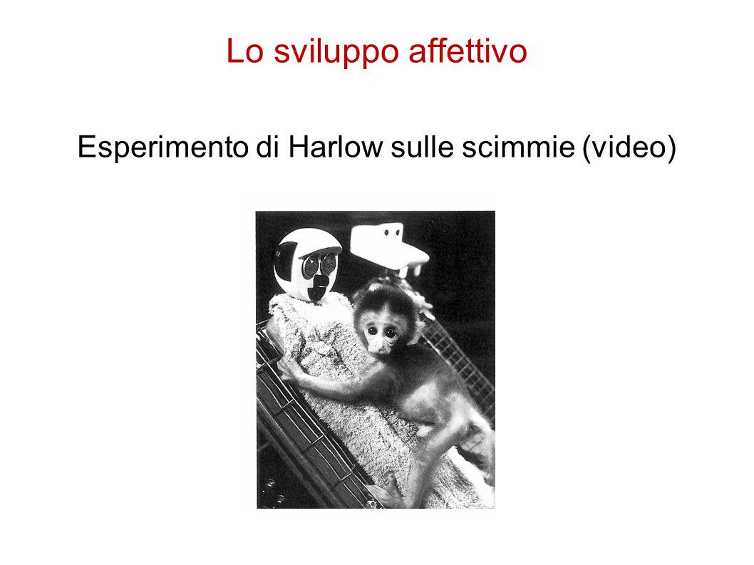 Lo sviluppo affettivo Esperimento di Harlow sulle scimmie (video)