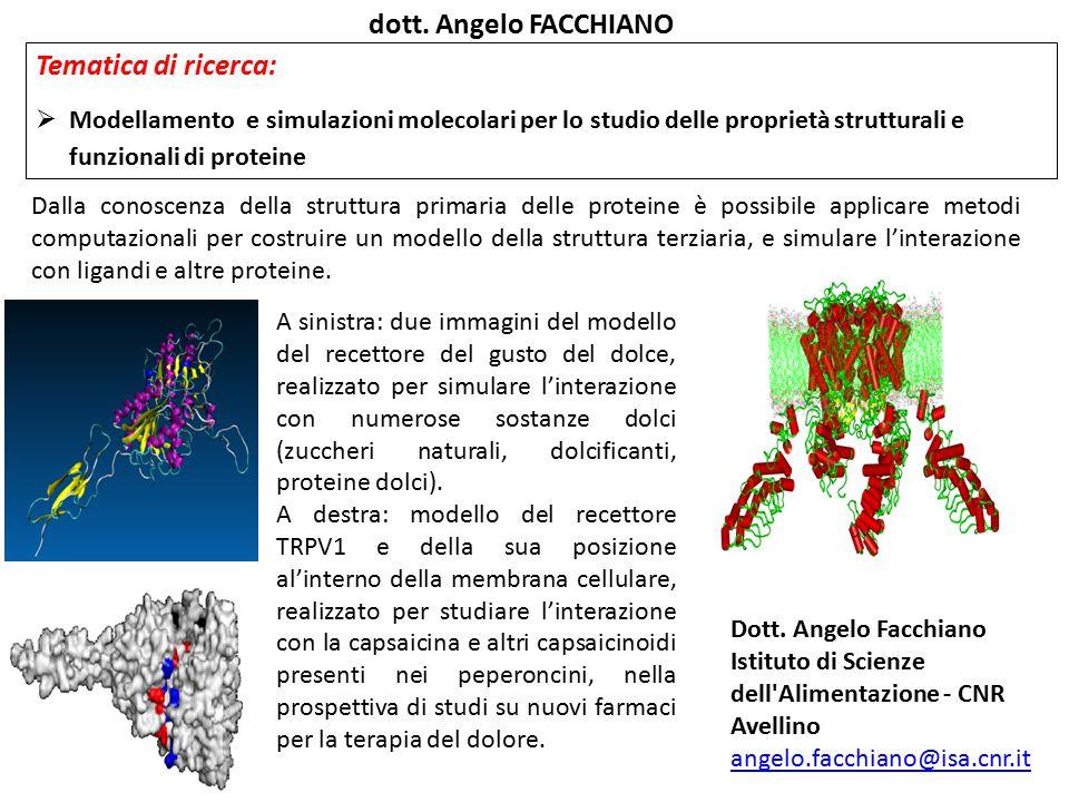 Dalla conoscenza della struttura primaria delle proteine è possibile applicare metodi computazionali per costruire un modello della struttura terziari