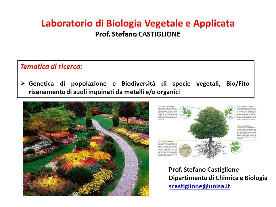 Laboratorio di Biologia Vegetale e Applicata Prof. Stefano CASTIGLIONE Tematica di ricerca:  Genetica di popolazione e Biodiversità di specie vegetal