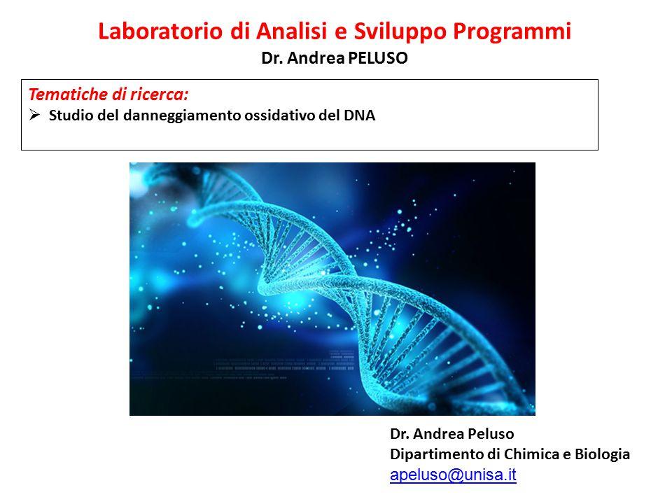 Laboratorio di Analisi e Sviluppo Programmi Dr. Andrea PELUSO Tematiche di ricerca:  Studio del danneggiamento ossidativo del DNA Dr. Andrea Peluso D