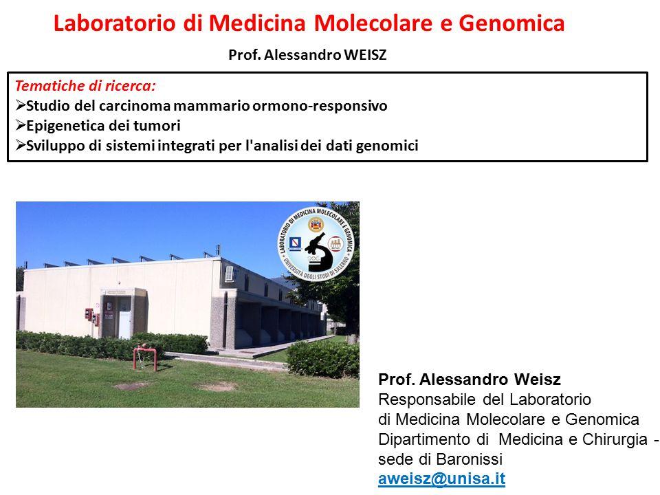 Prof. Alessandro WEISZ Prof. Alessandro Weisz Responsabile del Laboratorio di Medicina Molecolare e Genomica Dipartimento di Medicina e Chirurgia - se