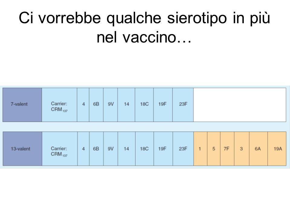 … ha lo stesso profilo di tolleranza di PCV7 per rossore… GRIMPEL et al, Study 008, ESPID 2009