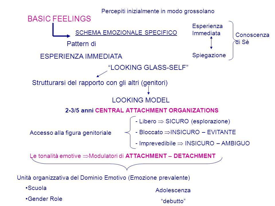 BASIC FEELINGS Percepiti inizialmente in modo grossolano SCHEMA EMOZIONALE SPECIFICO Esperienza Immediata Spiegazione Conoscenza di Sè Pattern di ESPERIENZA IMMEDIATA LOOKING GLASS-SELF Strutturarsi del rapporto con gli altri (genitori) LOOKING MODEL 2-3/5 anni CENTRAL ATTACHMENT ORGANIZATIONS - Libero  SICURO (esplorazione) - Bloccato  INSICURO – EVITANTE - Imprevedibile  INSICURO – AMBIGUO Accesso alla figura genitoriale Le tonalità emotive  Modulatori di ATTACHMENT – DETACHMENT Unità organizzativa del Dominio Emotivo (Emozione prevalente) Scuola Gender Role Adolescenza debutto