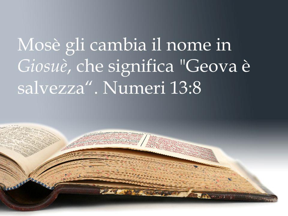 Mosè gli cambia il nome in Giosuè, che significa Geova è salvezza . Numeri 13:8