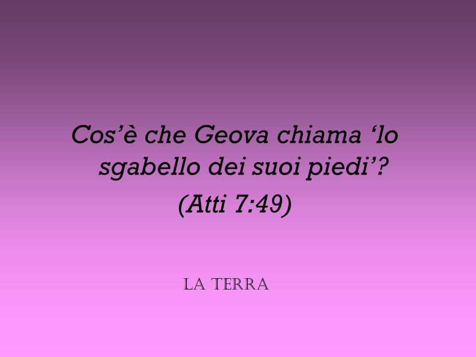 Quale dio filisteo fu umiliato davanti alla sacra arca di Geova? (1 Samuele 5:2-7). Dagon Pensa!