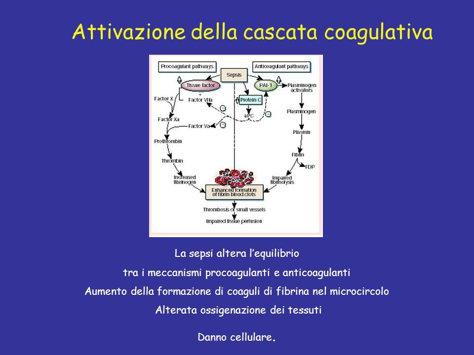 Attivazione della cascata coagulativa La sepsi altera l'equilibrio tra i meccanismi procoagulanti e anticoagulanti Aumento della formazione di coaguli