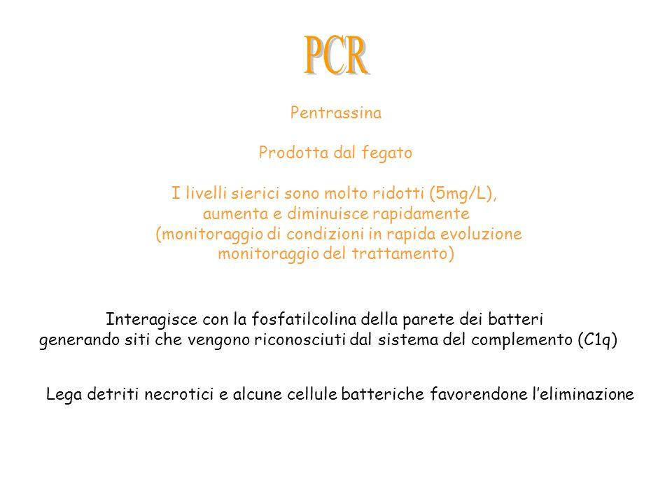 Pentrassina Prodotta dal fegato I livelli sierici sono molto ridotti (5mg/L), aumenta e diminuisce rapidamente (monitoraggio di condizioni in rapida e