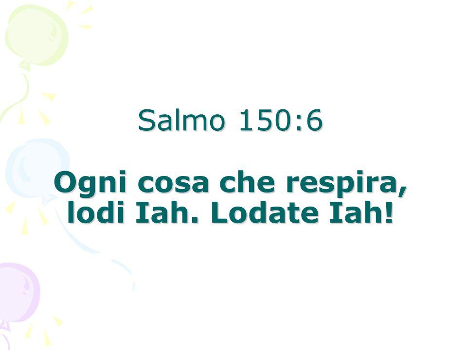 Salmo 150:6 Ogni cosa che respira, lodi Iah. Lodate Iah!
