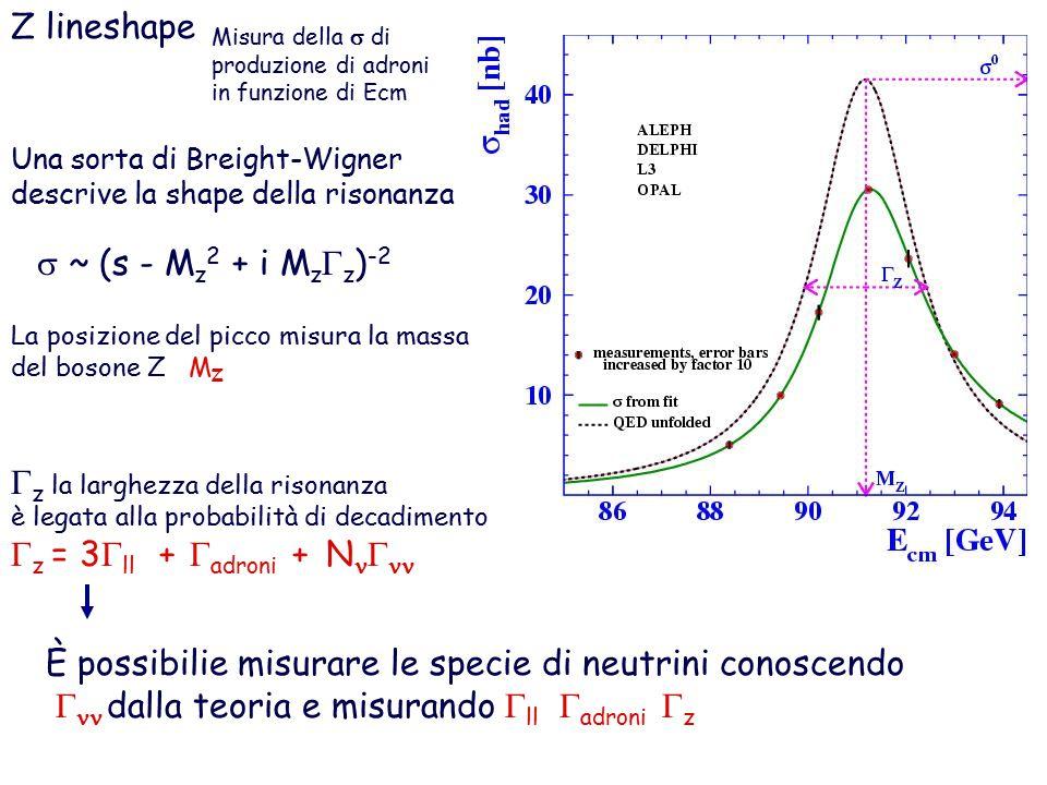 Z lineshape Una sorta di Breight-Wigner descrive la shape della risonanza  ~ (s - M z 2 + i M z  z ) -2  z la larghezza della risonanza è legata alla probabilità di decadimento  z = 3  ll +  adroni + N  È possibilie misurare le specie di neutrini conoscendo   dalla teoria e misurando  ll  adroni  z La posizione del picco misura la massa del bosone Z M Z Misura della  di produzione di adroni in funzione di Ecm