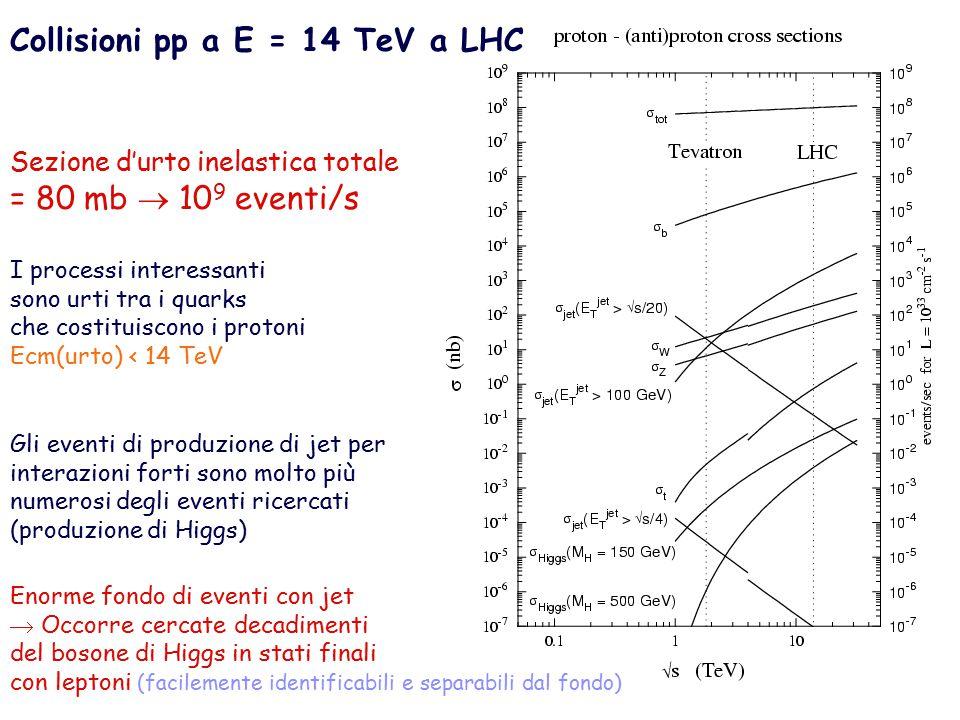 Collisioni pp a E = 14 TeV a LHC Sezione d'urto inelastica totale = 80 mb  10 9 eventi/s I processi interessanti sono urti tra i quarks che costituiscono i protoni Ecm(urto) < 14 TeV Gli eventi di produzione di jet per interazioni forti sono molto più numerosi degli eventi ricercati (produzione di Higgs) Enorme fondo di eventi con jet  Occorre cercate decadimenti del bosone di Higgs in stati finali con leptoni (facilemente identificabili e separabili dal fondo)