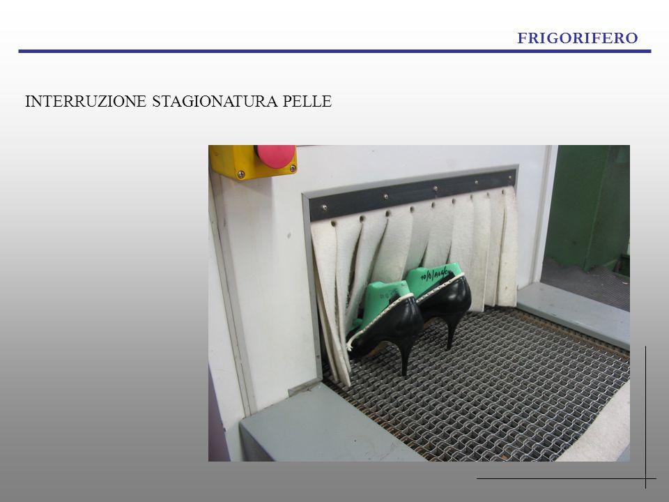 FRIGORIFERO INTERRUZIONE STAGIONATURA PELLE