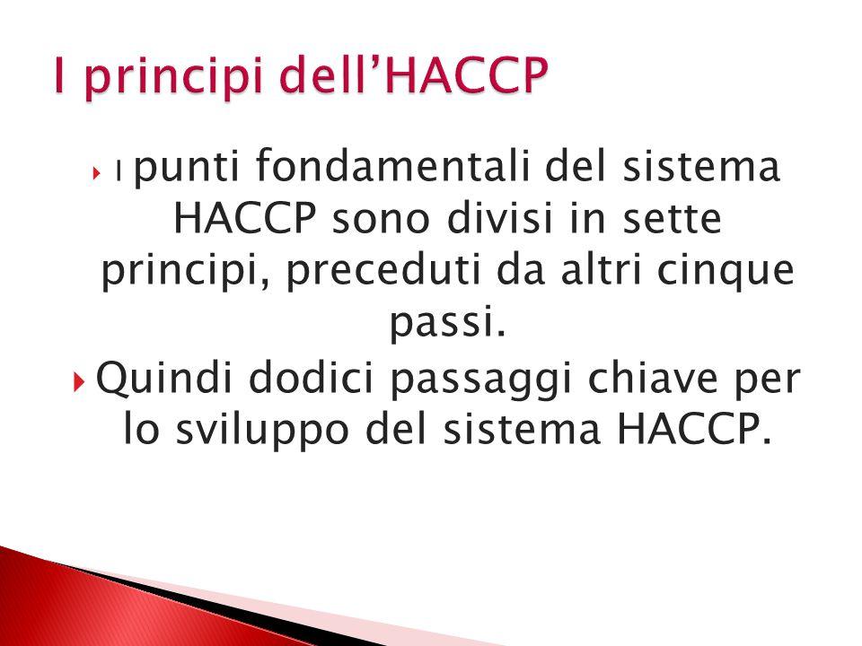  I punti fondamentali del sistema HACCP sono divisi in sette principi, preceduti da altri cinque passi.  Quindi dodici passaggi chiave per lo svilup