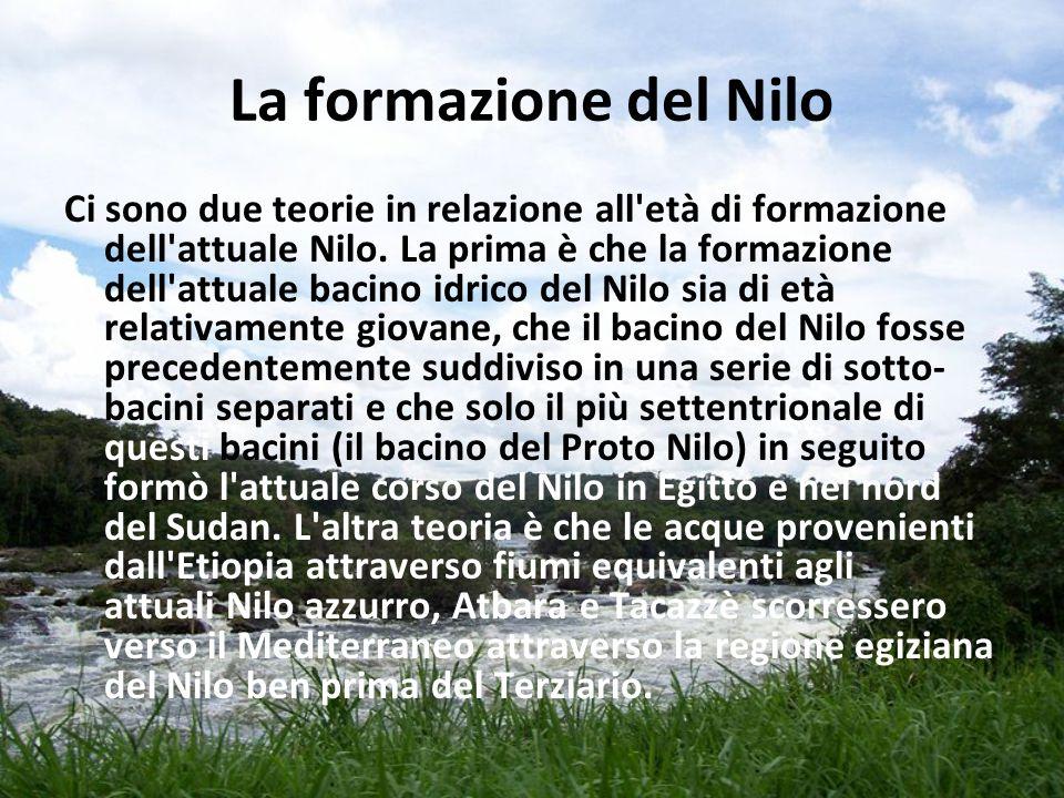 La formazione del Nilo Ci sono due teorie in relazione all'età di formazione dell'attuale Nilo. La prima è che la formazione dell'attuale bacino idric