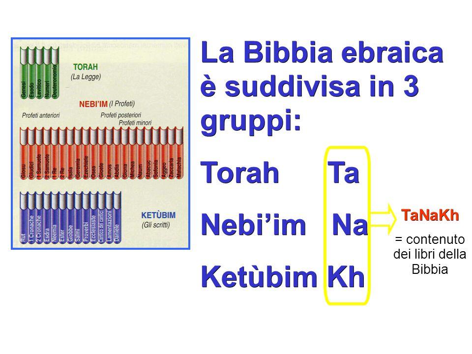 La Bibbia ebraica è suddivisa in 3 gruppi: Torah Ta Nebi'im Na Ketùbim Kh TaNaKh = contenuto dei libri della Bibbia
