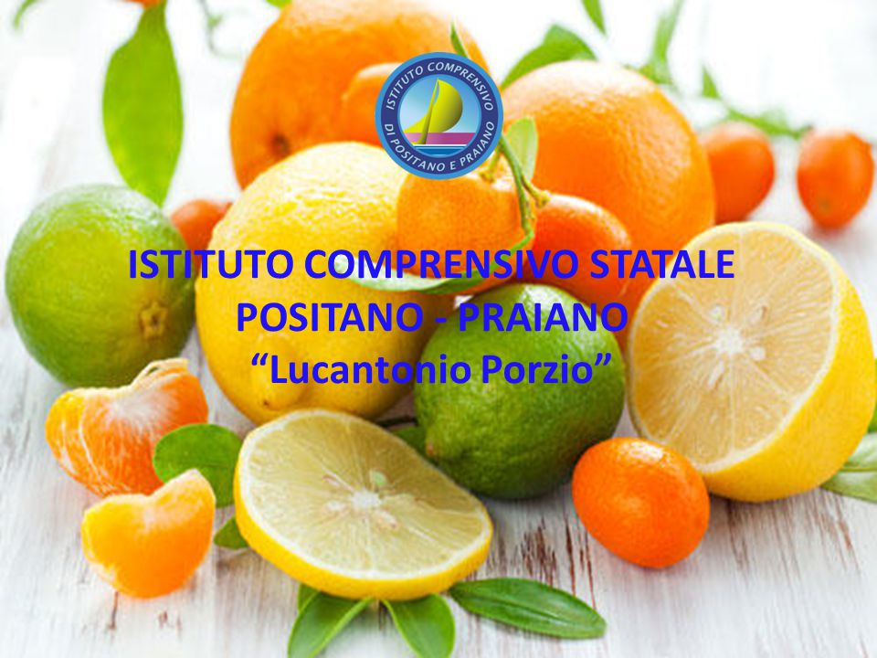 """I LIMONI ISTITUTO COMPRENSIVO STATALE POSITANO - PRAIANO """"Lucantonio Porzio"""""""