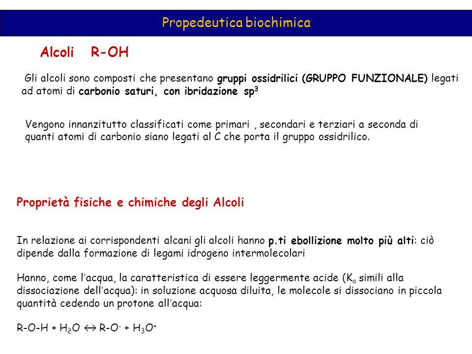 Propedeutica biochimica Alcoli R-OH Gli alcoli sono composti che presentano gruppi ossidrilici (GRUPPO FUNZIONALE) legati ad atomi di carbonio saturi,