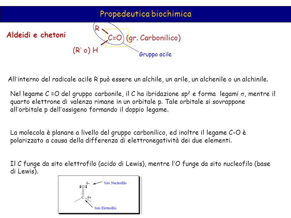 Propedeutica biochimica Aldeidi e chetoni C=O (gr. Carbonilico) R (R ' o) H Gruppo acile All ' interno del radicale acile R può essere un alchile, un
