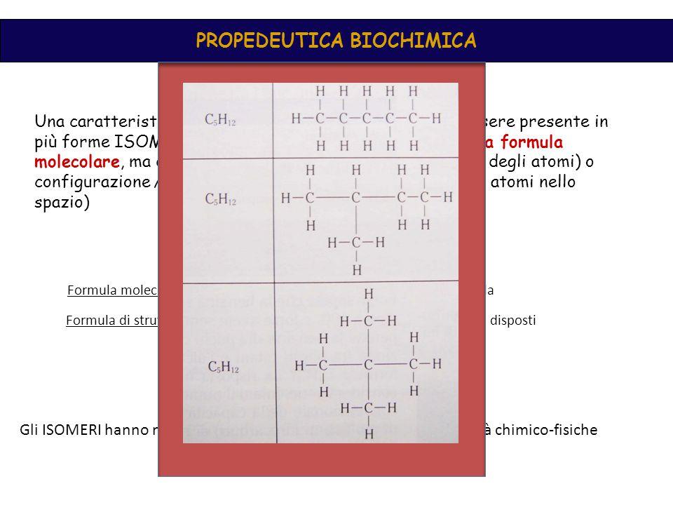 PROPEDEUTICA BIOCHIMICA ISOMERIA stereoisomeriacostituzionale Sono composti diversi nell ' ordine con cui gli atomi sono legati tra loro Hanno la medesima costituzione (atomi reciprocamente legati nel medesimo modo), ma differiscono nella disposizione degli atomi nello spazio conformazionale Gli isomeri sono convertibili uno nell ' altro per semplice rotazione attorno ad un legame configurazionale Gli isomeri sono convertibili uno nell ' altro per rottura e ricostruzione di un legame diasteroisomerienantiomeri C 6 H 14 Di catena (hanno diversi p.di fusione e di ebollizione, ma reattività simili) Di posizione (C 4 H 9 Cl, 1 cloro butano, 2cloro butano) Di funzione (alcool o etere)