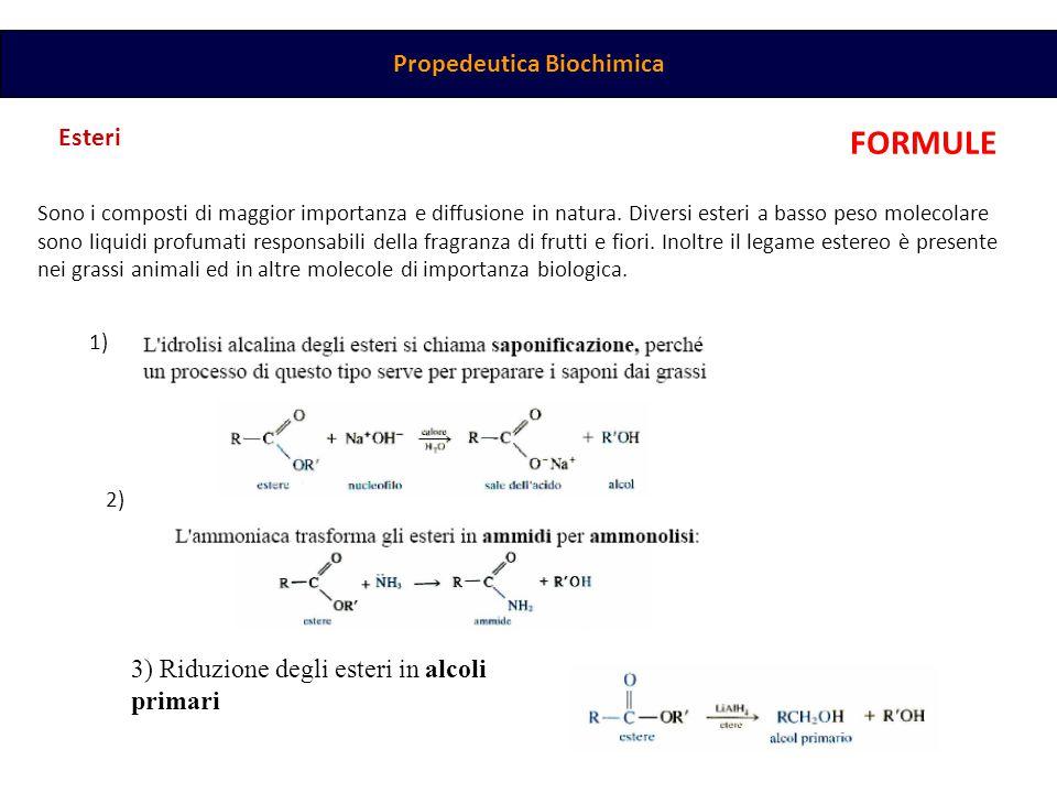 Propedeutica Biochimica Esteri Sono i composti di maggior importanza e diffusione in natura. Diversi esteri a basso peso molecolare sono liquidi profu