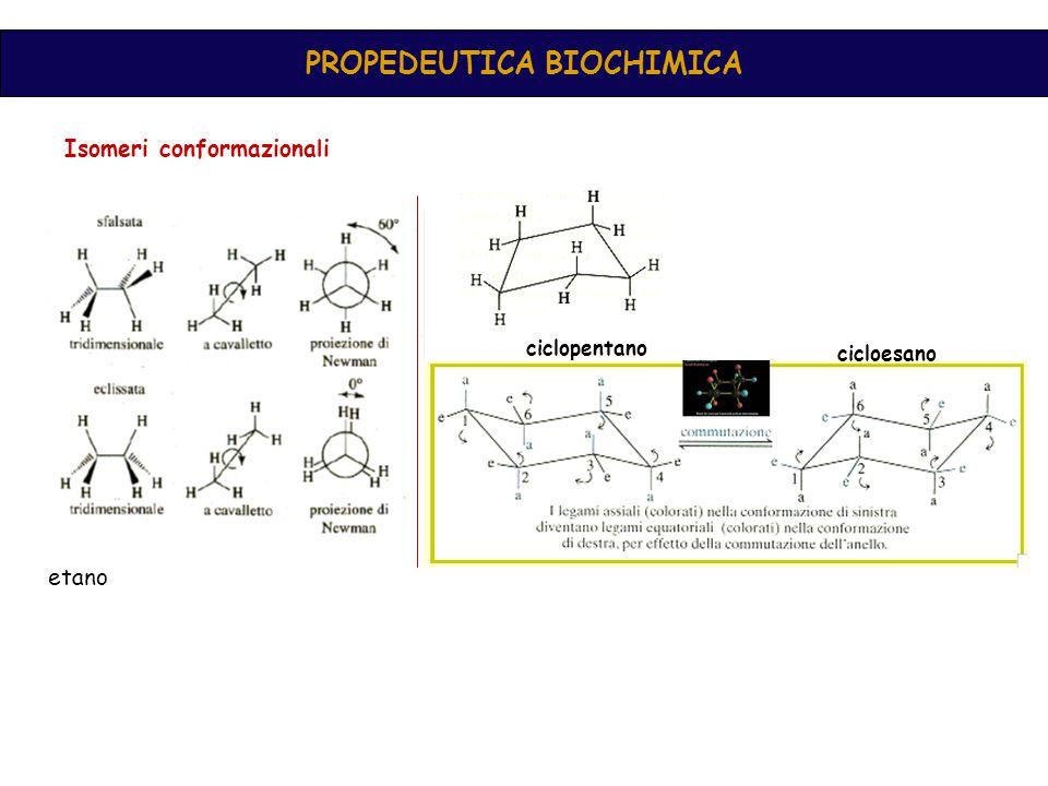 Propedeutica biochimica Aldeidi e chetoni C=O (gr.
