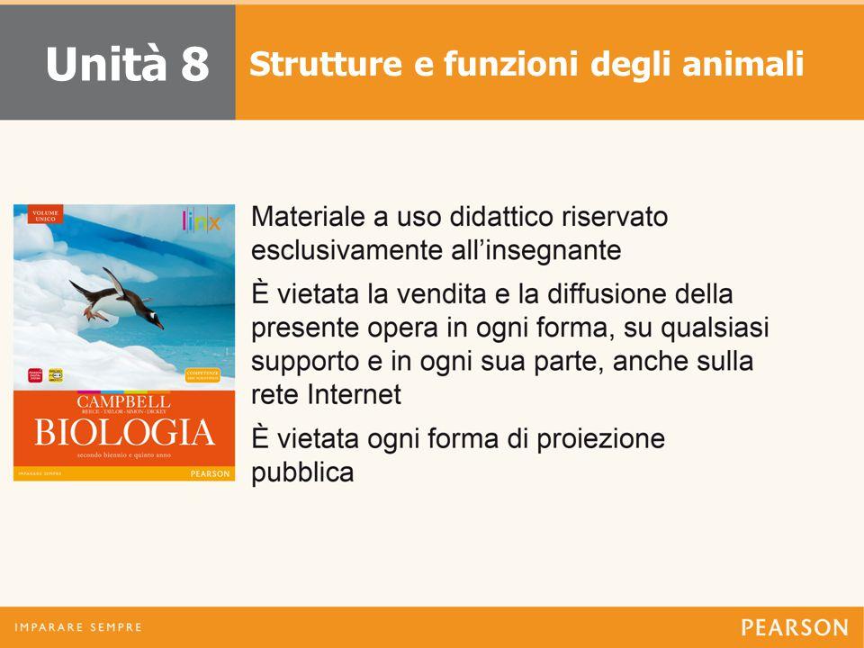 Strutture e funzioni degli animali Unità 8