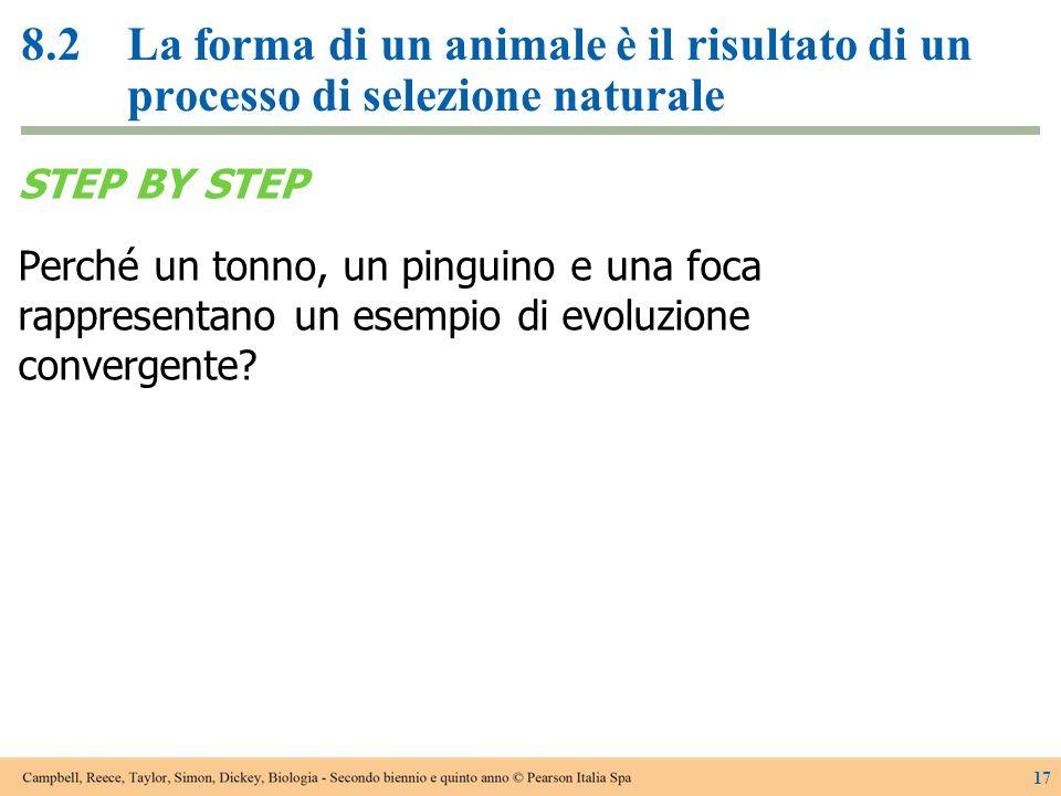 8.2La forma di un animale è il risultato di un processo di selezione naturale STEP BY STEP Perché un tonno, un pinguino e una foca rappresentano un es