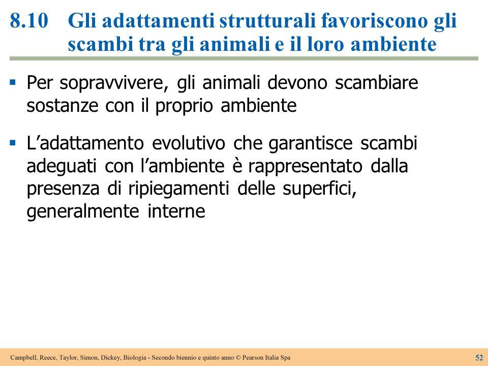 8.10Gli adattamenti strutturali favoriscono gli scambi tra gli animali e il loro ambiente  Per sopravvivere, gli animali devono scambiare sostanze co