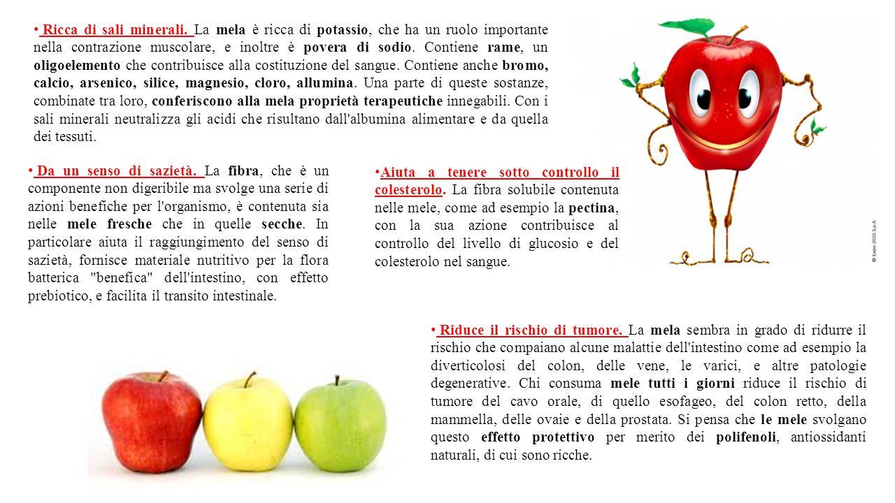 Ricca di sali minerali. La mela è ricca di potassio, che ha un ruolo importante nella contrazione muscolare, e inoltre è povera di sodio. Contiene ram