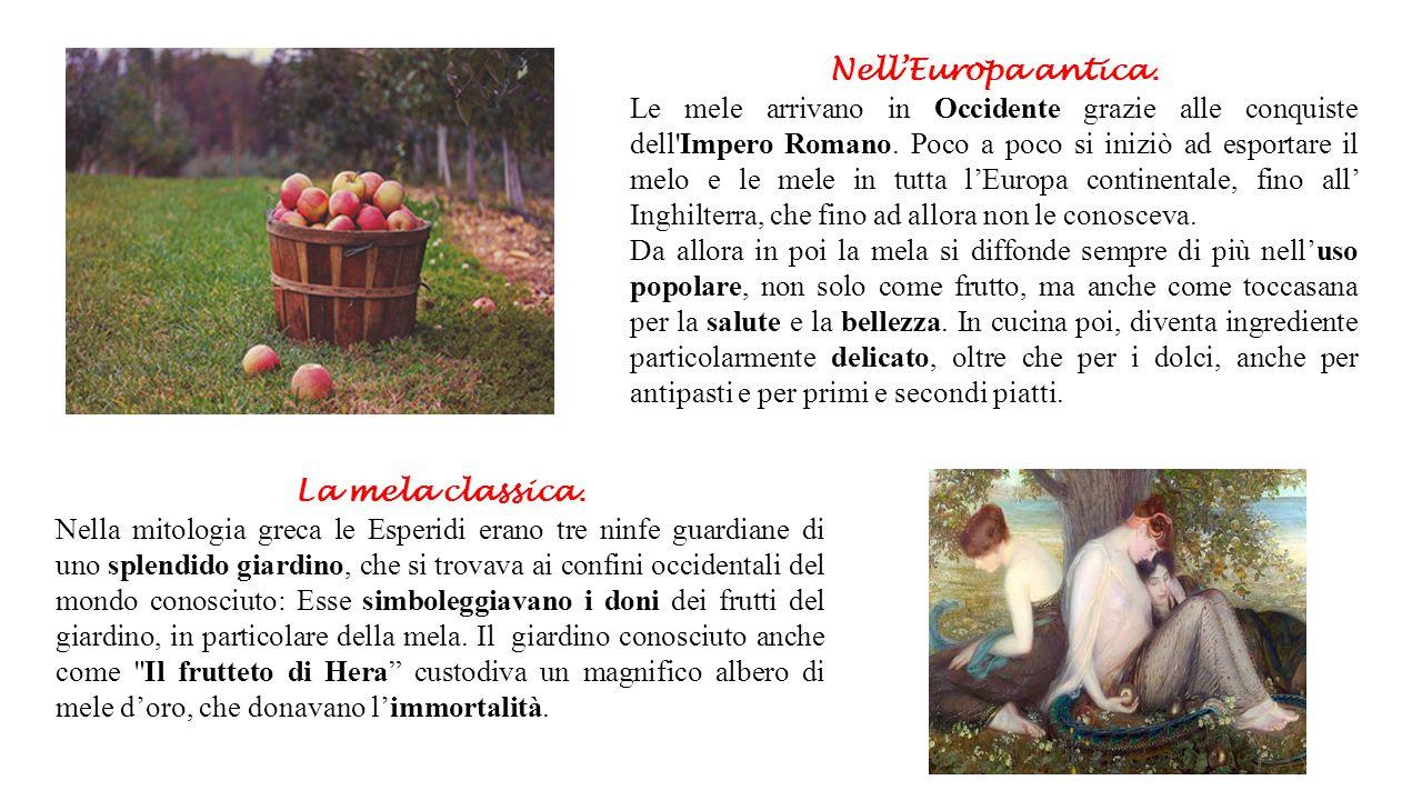 Nell'Europa antica. Le mele arrivano in Occidente grazie alle conquiste dell'Impero Romano. Poco a poco si iniziò ad esportare il melo e le mele in tu