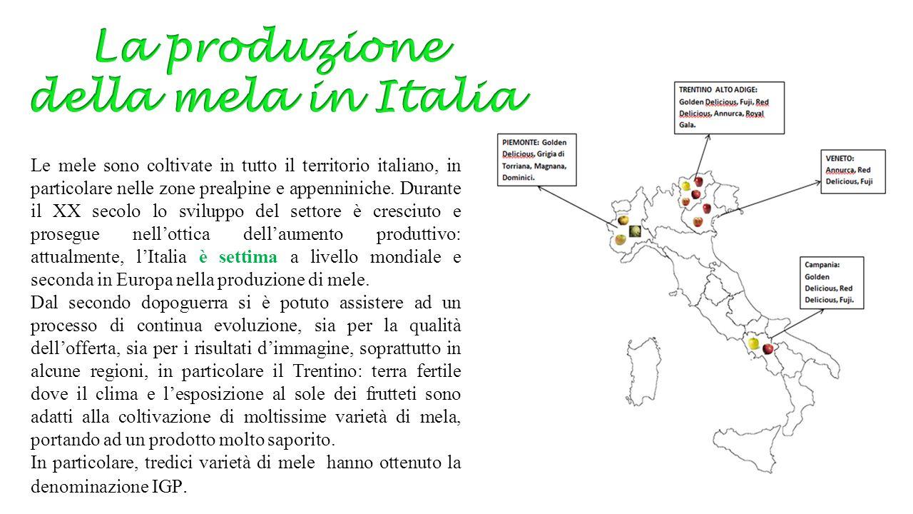 Le mele sono coltivate in tutto il territorio italiano, in particolare nelle zone prealpine e appenniniche. Durante il XX secolo lo sviluppo del setto