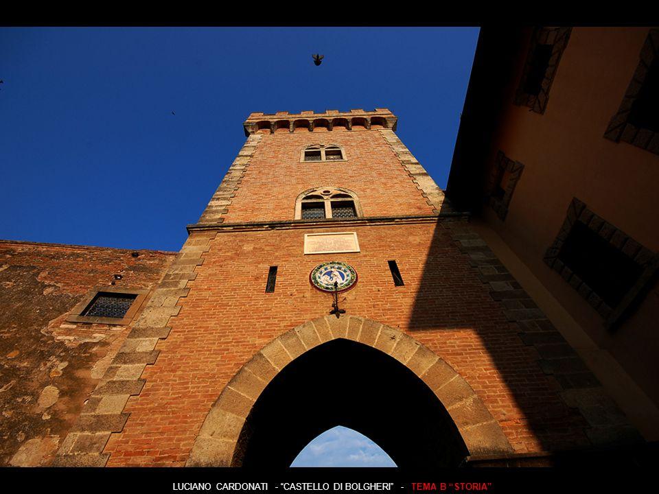 LUCIANO CARDONATI - CASTELLO DI BOLGHERI - TEMA B STORIA