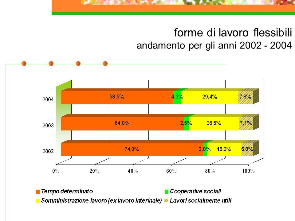 forme di lavoro flessibili andamento per gli anni 2002 - 2004