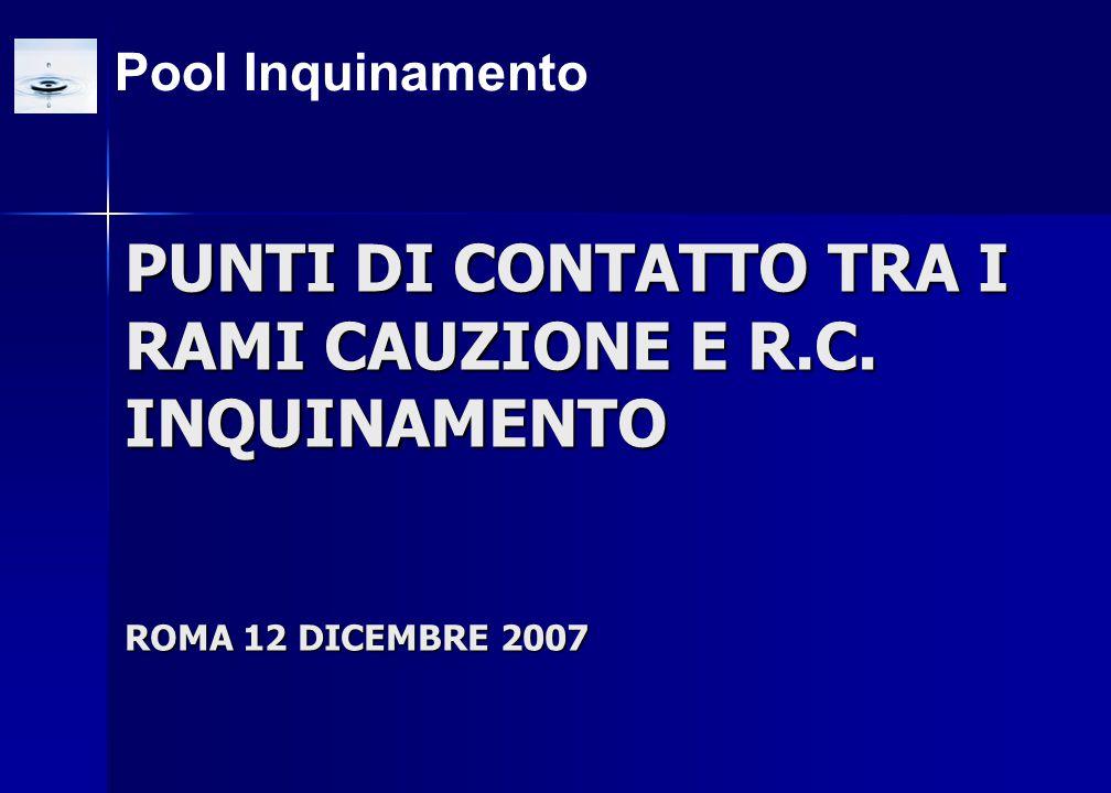 PUNTI DI CONTATTO TRA I RAMI CAUZIONE E R.C. INQUINAMENTO ROMA 12 DICEMBRE 2007 Pool Inquinamento
