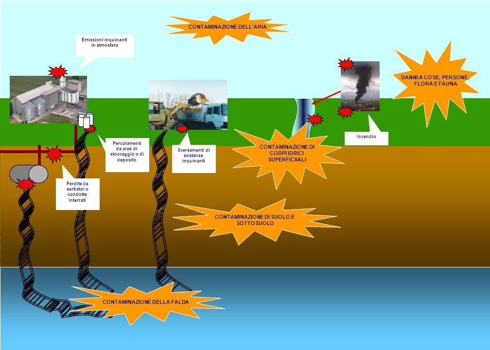 DANNO AD ECOSISTEMI NATURALI (FLORA, FAUNA, HABITAT) Emissioni inquinanti in atmosfera CONTAMINAZIONE DI SUOLO E SOTTOSUOLO CONTAMINAZIONE DI CORPI ID