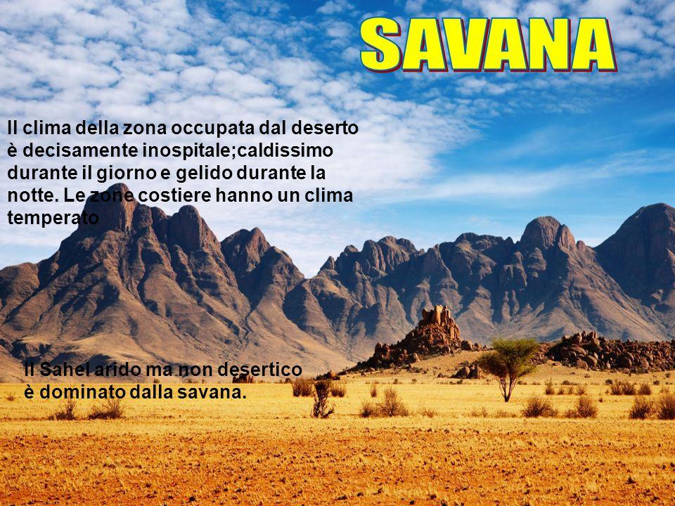 Il Sahel arido ma non desertico è dominato dalla savana. Il clima della zona occupata dal deserto è decisamente inospitale;caldissimo durante il giorn