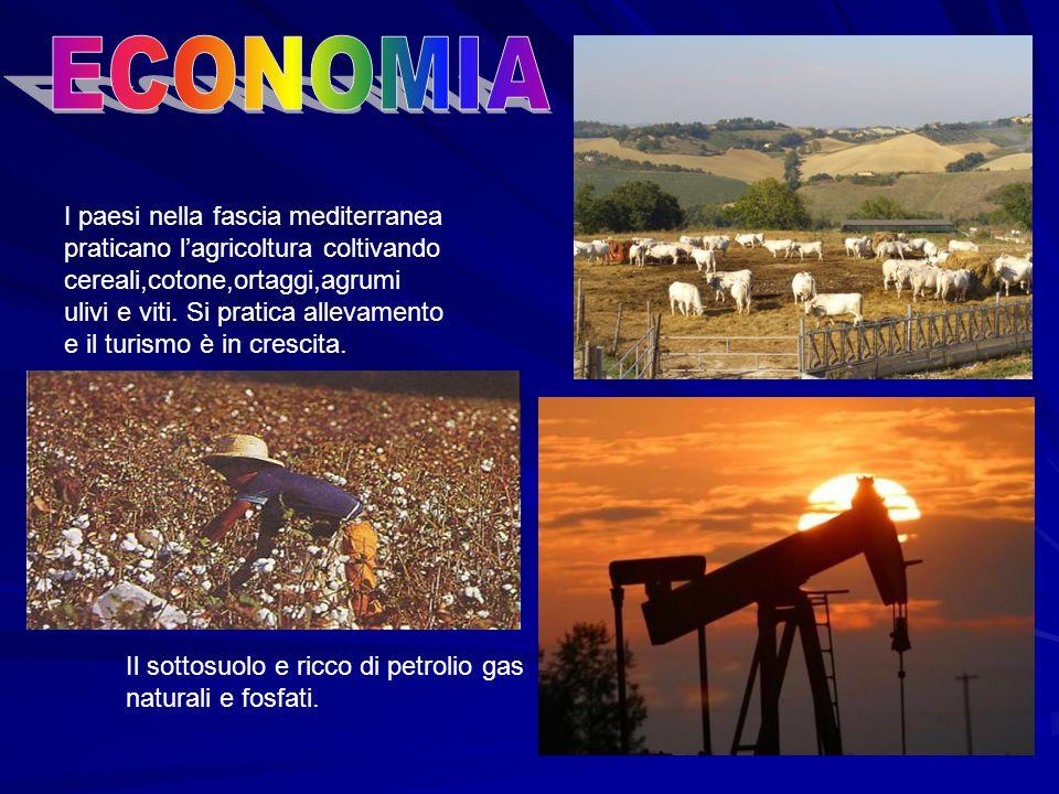 I paesi nella fascia mediterranea praticano l'agricoltura coltivando cereali,cotone,ortaggi,agrumi ulivi e viti.