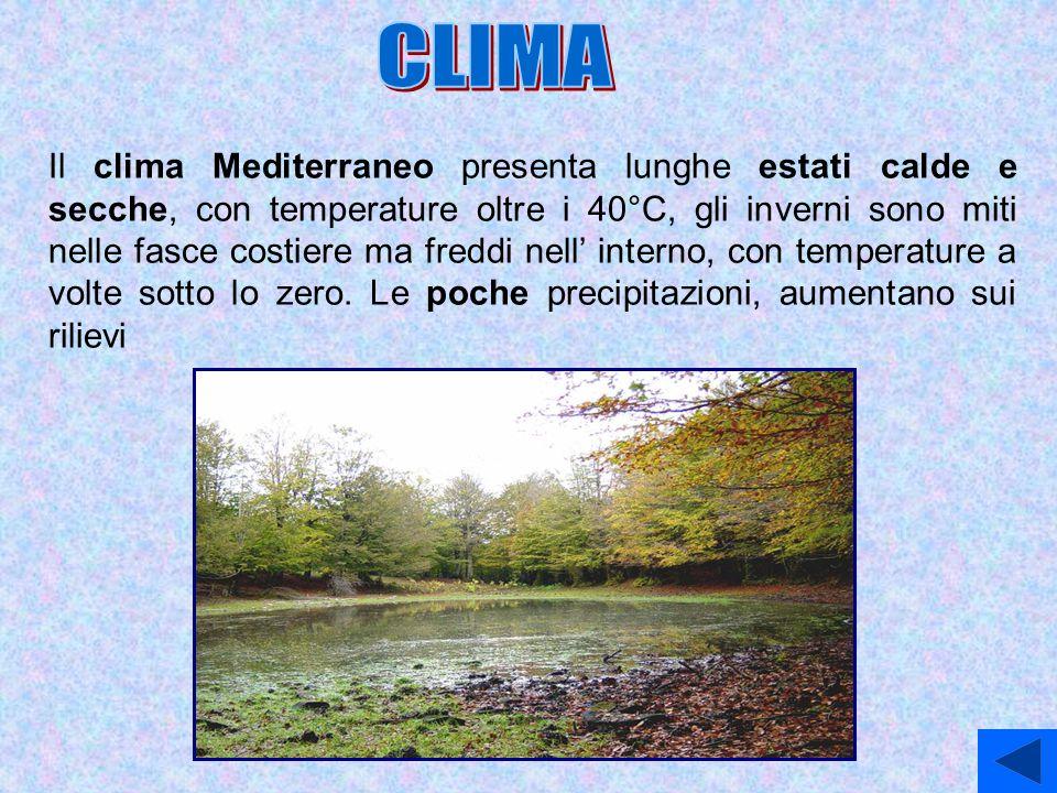 Il clima Mediterraneo presenta lunghe estati calde e secche, con temperature oltre i 40°C, gli inverni sono miti nelle fasce costiere ma freddi nell'