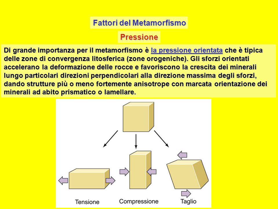 Fattori del Metamorfismo Pressione Di grande importanza per il metamorfismo è la pressione orientata che è tipica delle zone di convergenza litosferica (zone orogeniche).