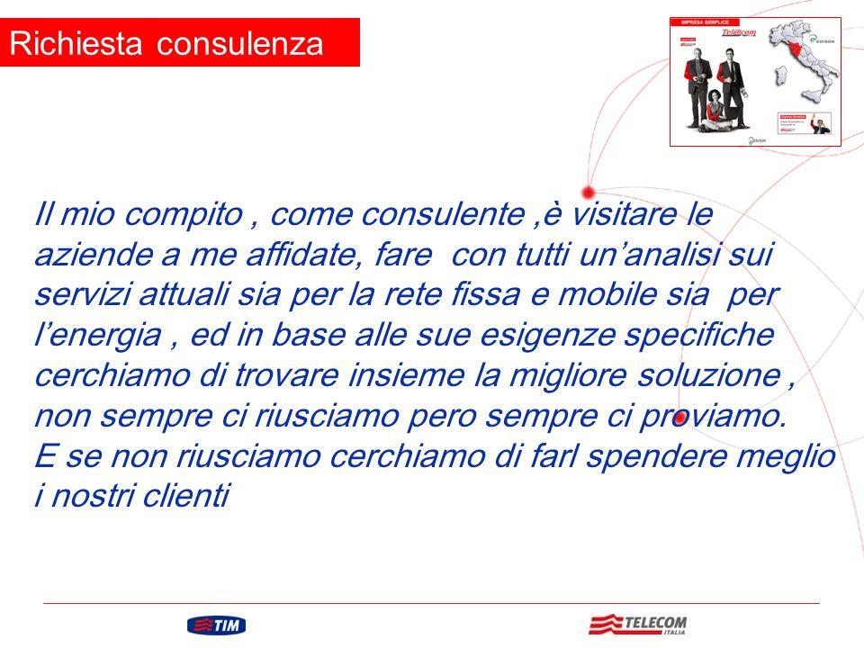 GRUPPO TELECOM ITALIA Il mio compito, come consulente,è visitare le aziende a me affidate, fare con tutti un'analisi sui servizi attuali sia per la re
