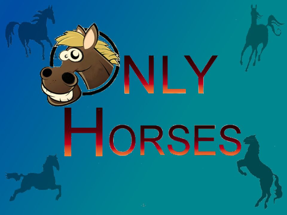 Introduzione Il progetto consiste nell'implementazione di un gioco in 2D basato sulla corsa dei cavalli.