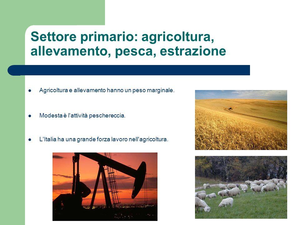 Settore secondario: industria, edilizia, artigianato La forza dell industria italiana consiste nella lavorazione e produzione di manufatti, principalmente in aziende medio-piccole di proprietà familiare.