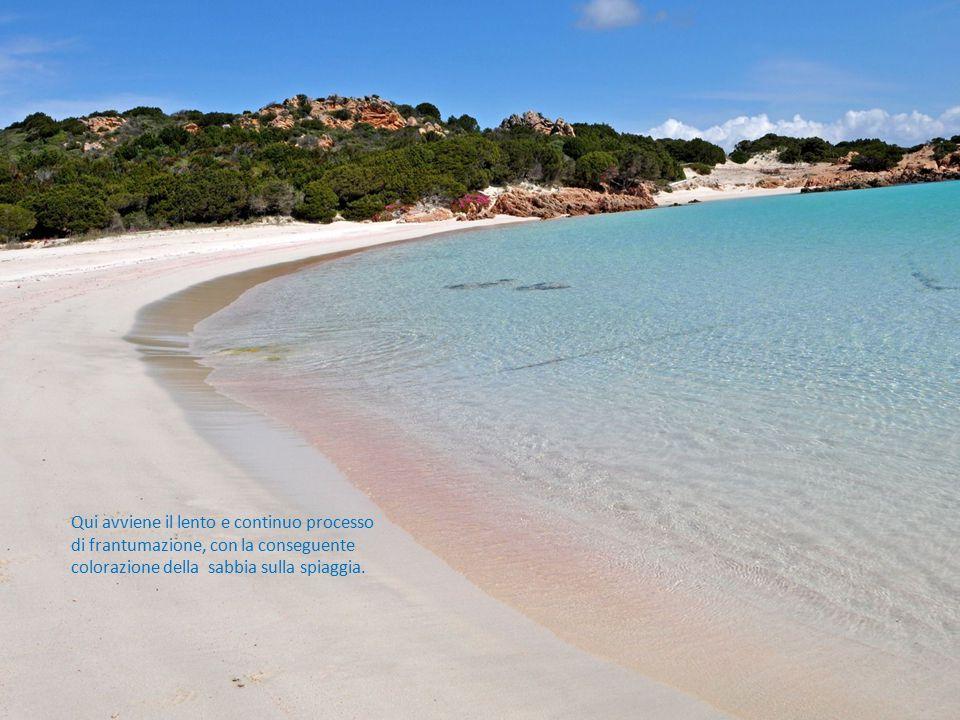 Qui avviene il lento e continuo processo di frantumazione, con la conseguente colorazione della sabbia sulla spiaggia.