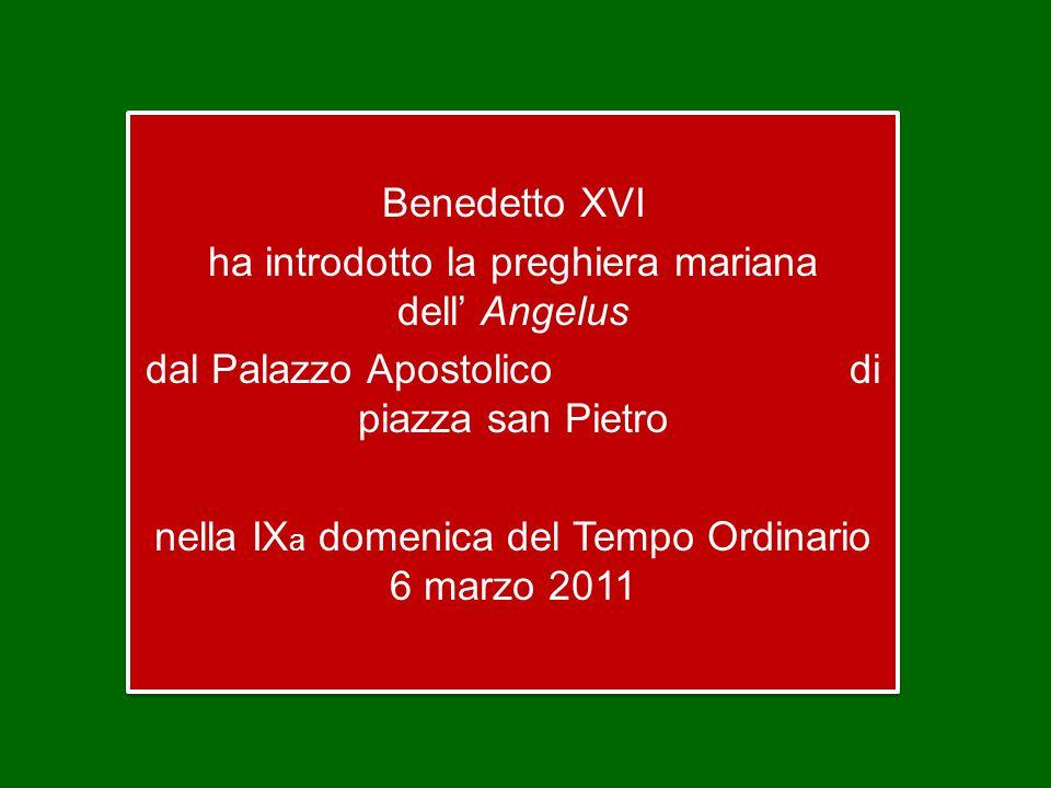 Benedetto XVI ha introdotto la preghiera mariana dell' Angelus dal Palazzo Apostolico di piazza san Pietro nella IX a domenica del Tempo Ordinario 6 marzo 2011 Benedetto XVI ha introdotto la preghiera mariana dell' Angelus dal Palazzo Apostolico di piazza san Pietro nella IX a domenica del Tempo Ordinario 6 marzo 2011